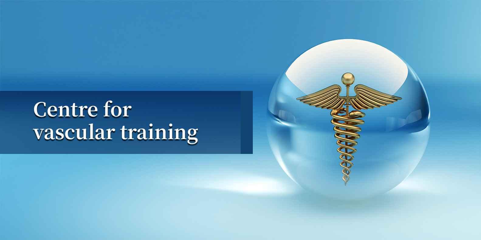 Centre For Vascular Training